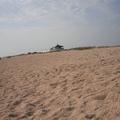 На пляже всегда полно места